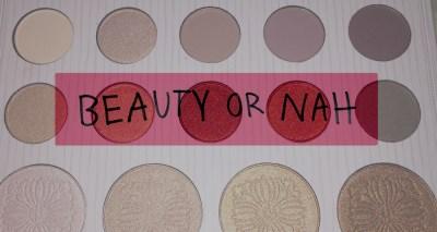 Beauty or Nah: Carli Bybel Eyeshadow Palette Review