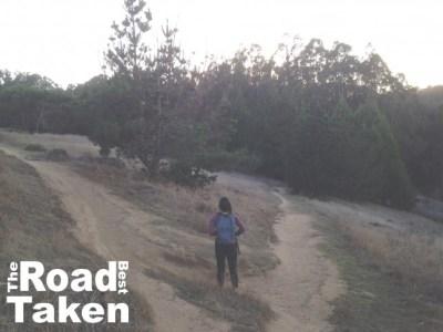 The Road Best Taken: Start