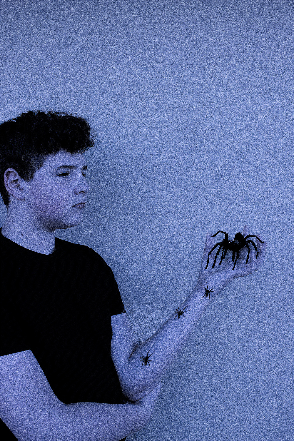 Is This The Real Life: Spiders