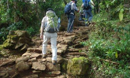 Kilimanjaro Trekking Marangu Route 6 Days