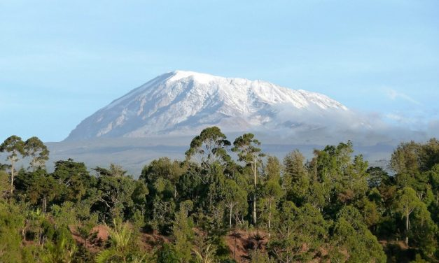 Kilimanjaro Direct Trekking Marangu Route 5 Days