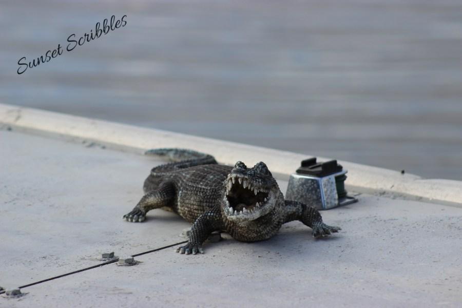 Airboat ride - Florida Everglades - fake alligator