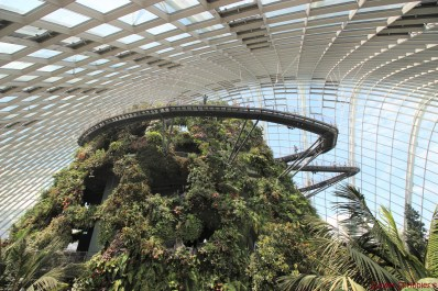 Singapore - Cloud Forest