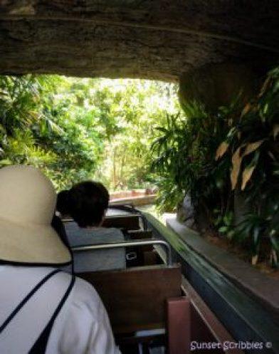 Singapore - Amazon River Quest - River Safari