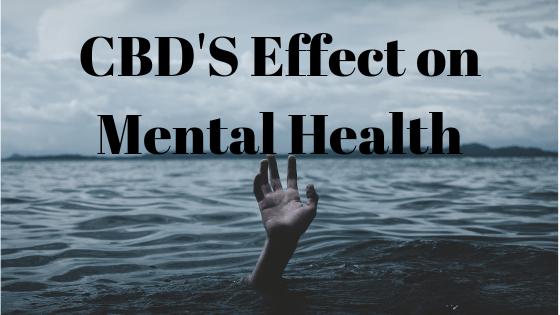 CBD's Effects on Mental Health