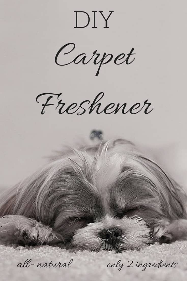 DIY Carpet Freshener
