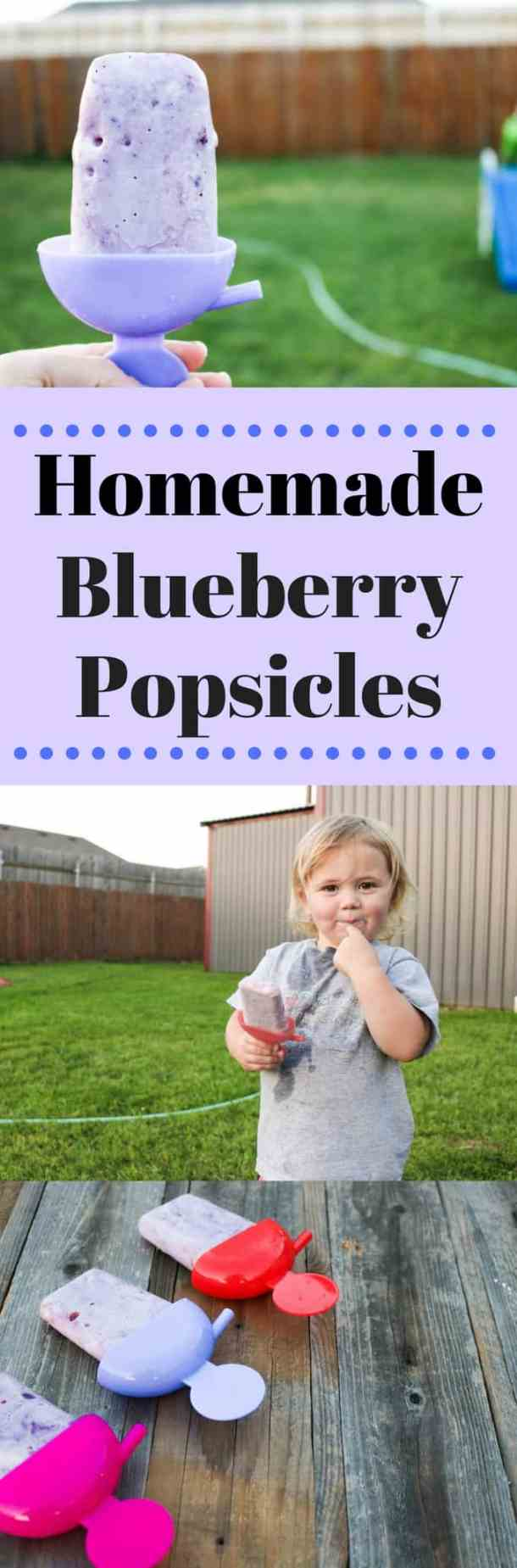 Healthy Homemade Blueberry Popsicles