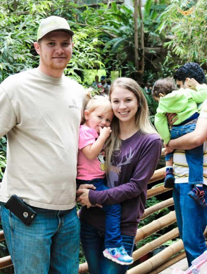 Visiting the Dallas World Aquarium with Kids