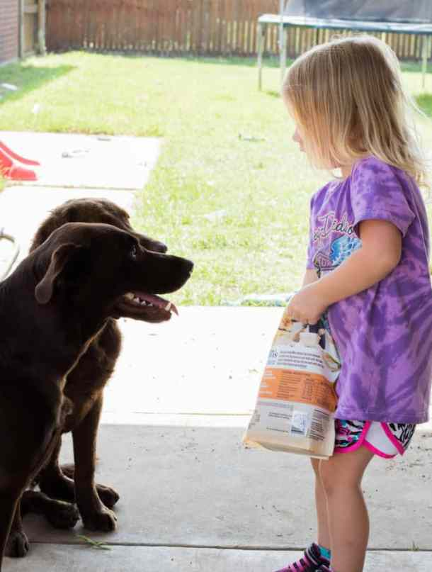 Why every little girl should own a dog