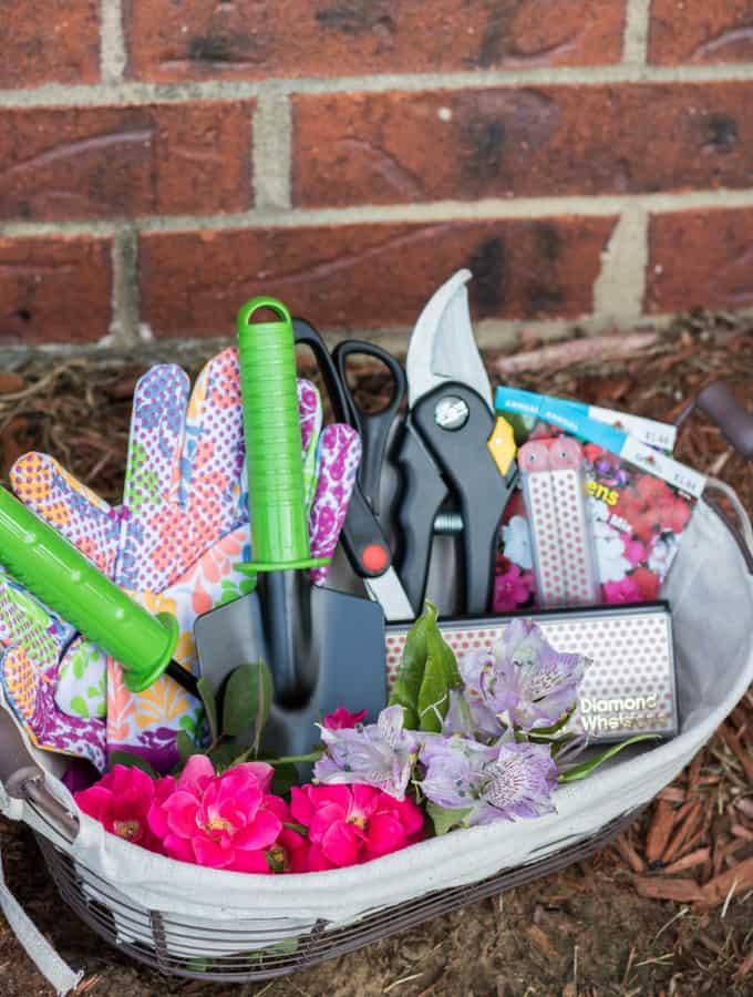 DIY Home Gardening Kit