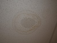 Dark Stains On Ceiling