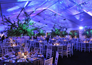 tent and chair rental kijaro sling event rentals boca raton | tents for parties