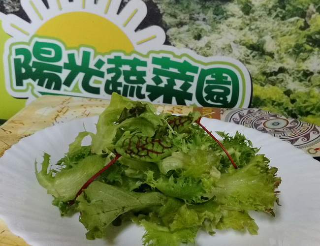 綜合貝比生菜(大)   生菜類   蔬果類   陽光蔬菜園