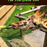 Fun Things to Do With Kids in Baltimore: The Maryland Zoo