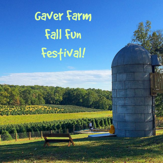Gaver Farm Fall Fun Festival