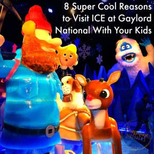 8 Super Cool Reasons to Visit ICE at Gaylord National With Your Kids
