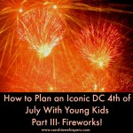 How to Plan an Iconic DC 4th of July With Young Kids: Part III- The Fireworks!