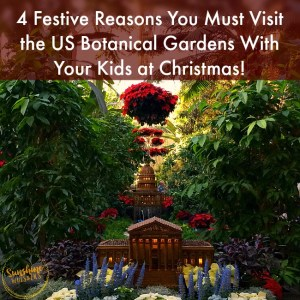 4 Festive Reasons You Must Visit the US Botanic Garden With Kids at Christmas!