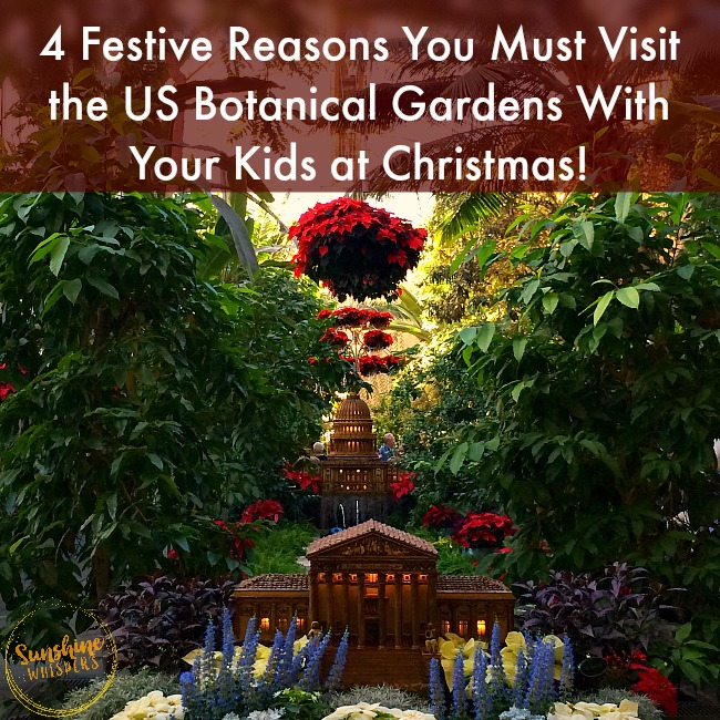 4 Festive Reasons You Must Visit The Us Botanic Garden With Kids At Christmas