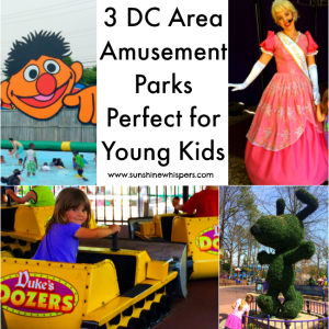 3 DC Area Amusement Parks That Are Perfect for Young Kids