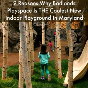 9 Reasons Why Badlands Playspace Is THE Coolest New Indoor Playground In Maryland