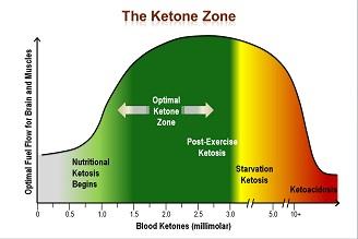 TheKetoneZone