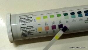 uristix-001