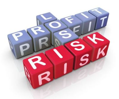 Managing Business Risk with Profit