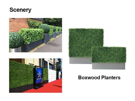 boxwood planters scenery