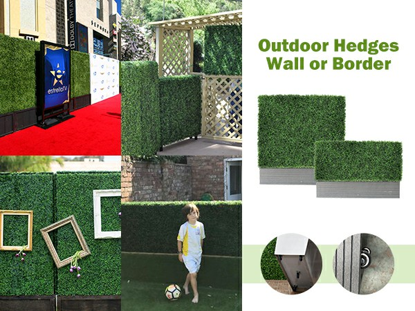outdoor hedges wall or border