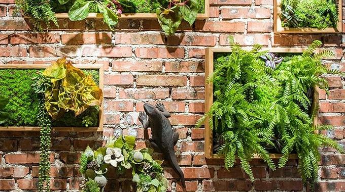 stunning wall mounted plants frame