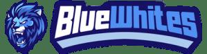 Haastattelussa Juho Mikkonen, BlueWhites eSports Oy