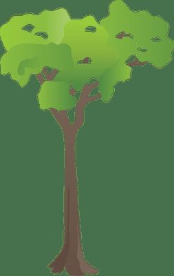 shrub graphic symbols diagram 2005 expedition fuse box index of ress tice 1 partage visuel ian flora trees shrubs symbol generic tree rainforest 3 png