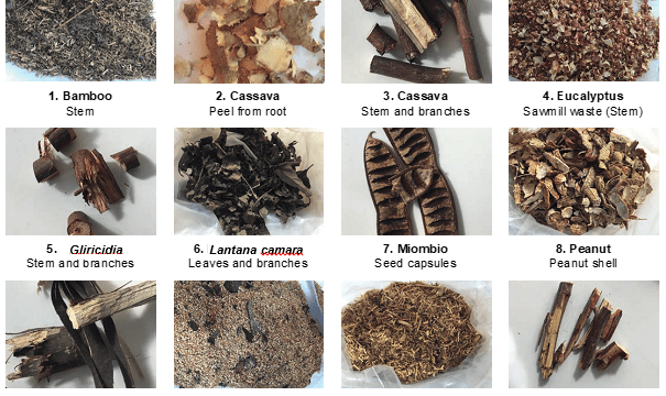 Bioresources for sustainable pellet production in Zambia: Twelve biomasses pelletized at different moisture contents