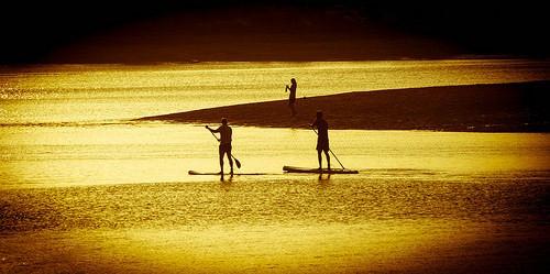 Paddle Board Rentals Mid Atlantic