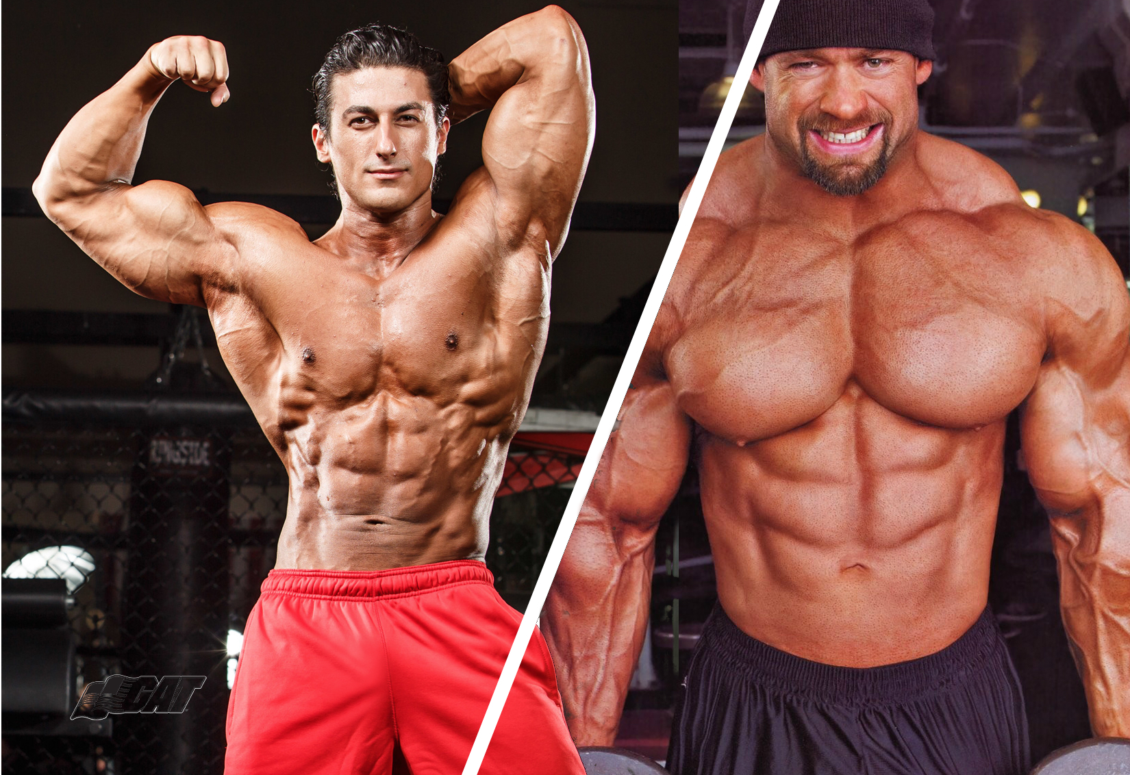 Powerlifting vs Bodybuilding – Similarities and Differences