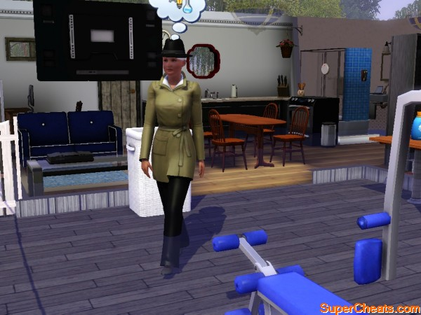 Journalism Career (Base Game ) - The Sims 3 Ambitions Guide