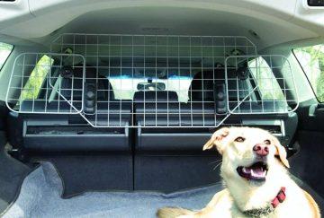 comment gerer efficacement lanxiete des chiens pendant les voyages