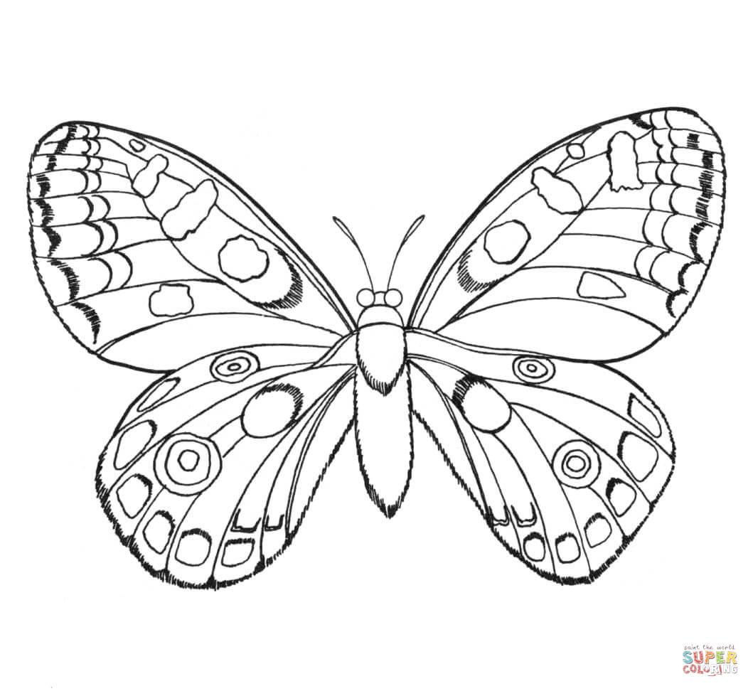 Ausmalbild Schmetterling Ausmalbilder kostenlos zum
