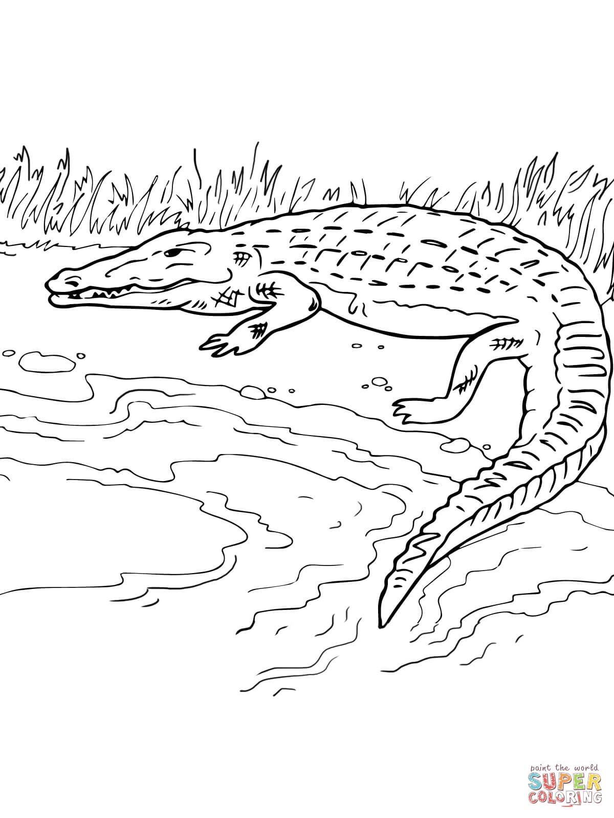 Crocodile On The River Bank Coloring Page