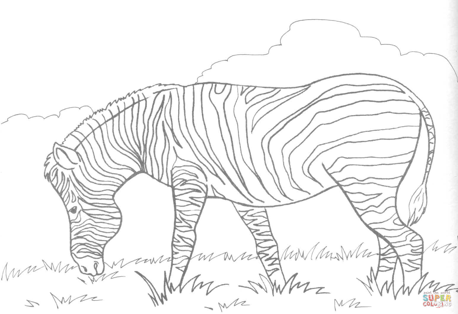 Zebra Eats Grass Coloring Page