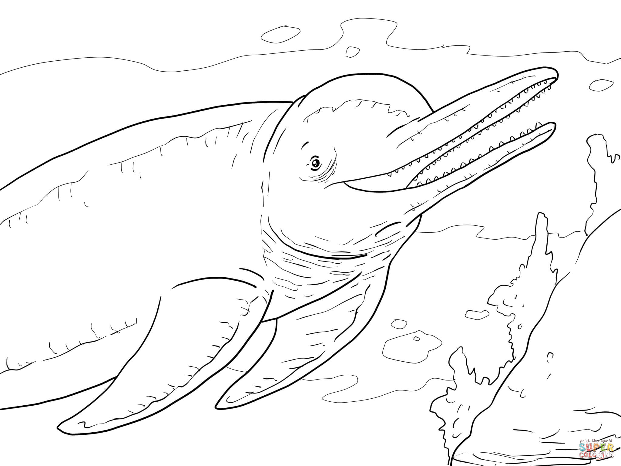 Amazon River Dolphin Boto Coloring Page