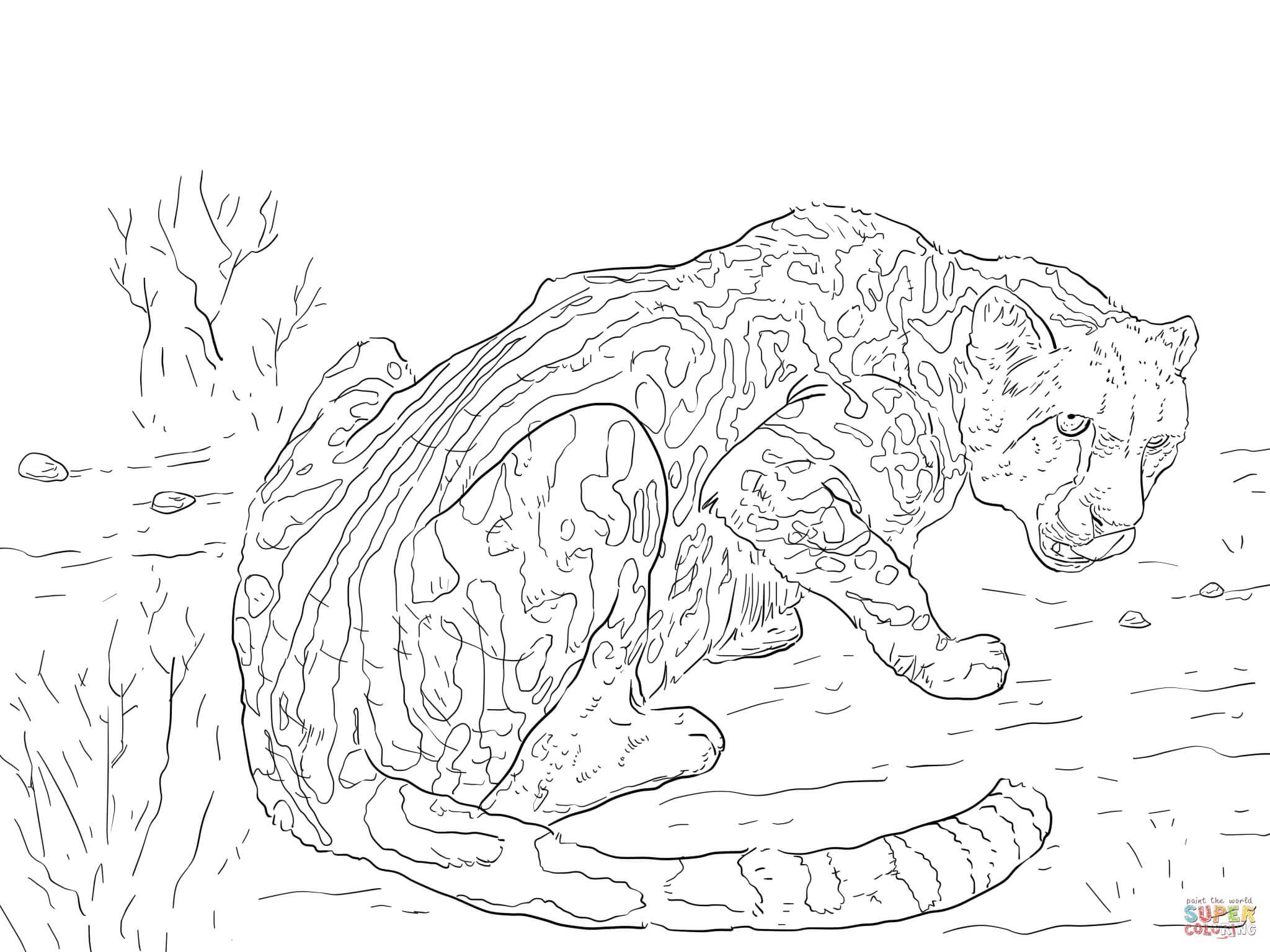 King Cheetah Coloring Page