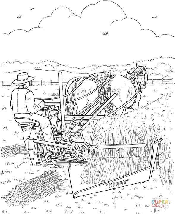 Getreide Bilder Zum Ausmalen