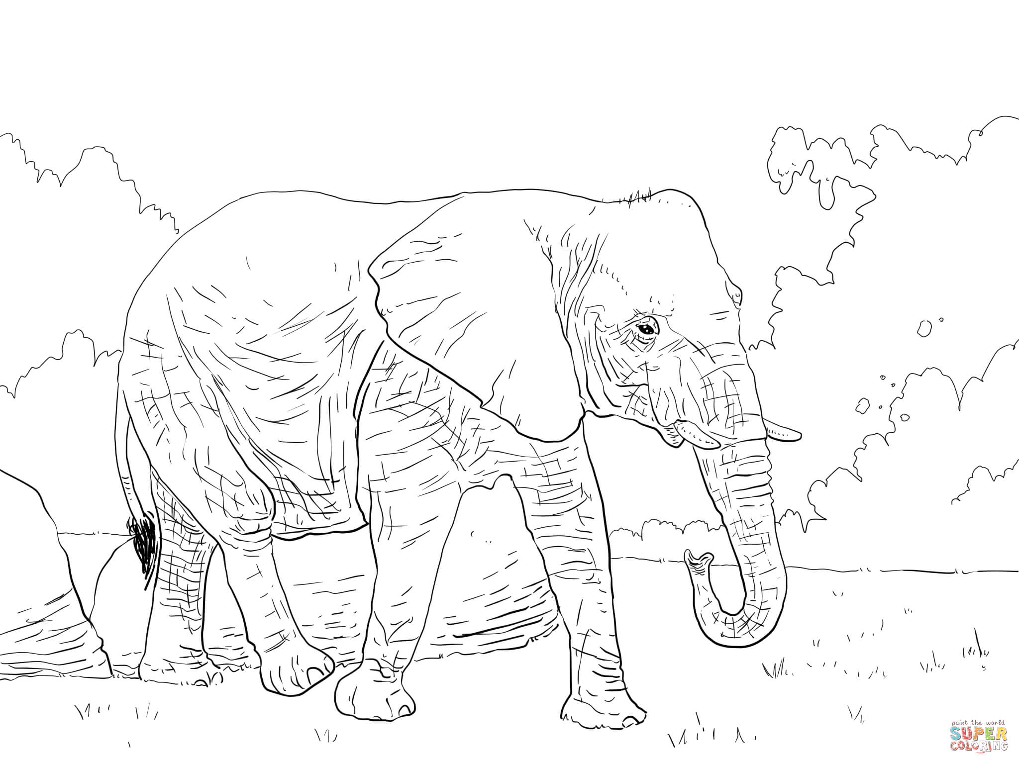 African Bush Elephant Walking Coloring Page