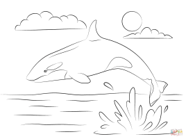 Cute Killer Whale is Jumping Out Of Water coloring page ...