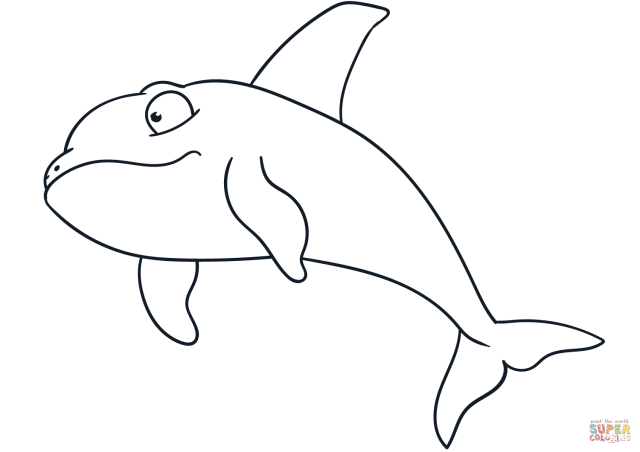 Killer Whale coloring page  Free Printable Coloring Pages