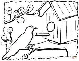 Birdhouse coloring page   Free Printable Coloring Pages