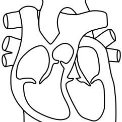 Large Heart Diagram Label Stearns Brake Coil Wiring Dibujo De Corazón Para Colorear Dibujos