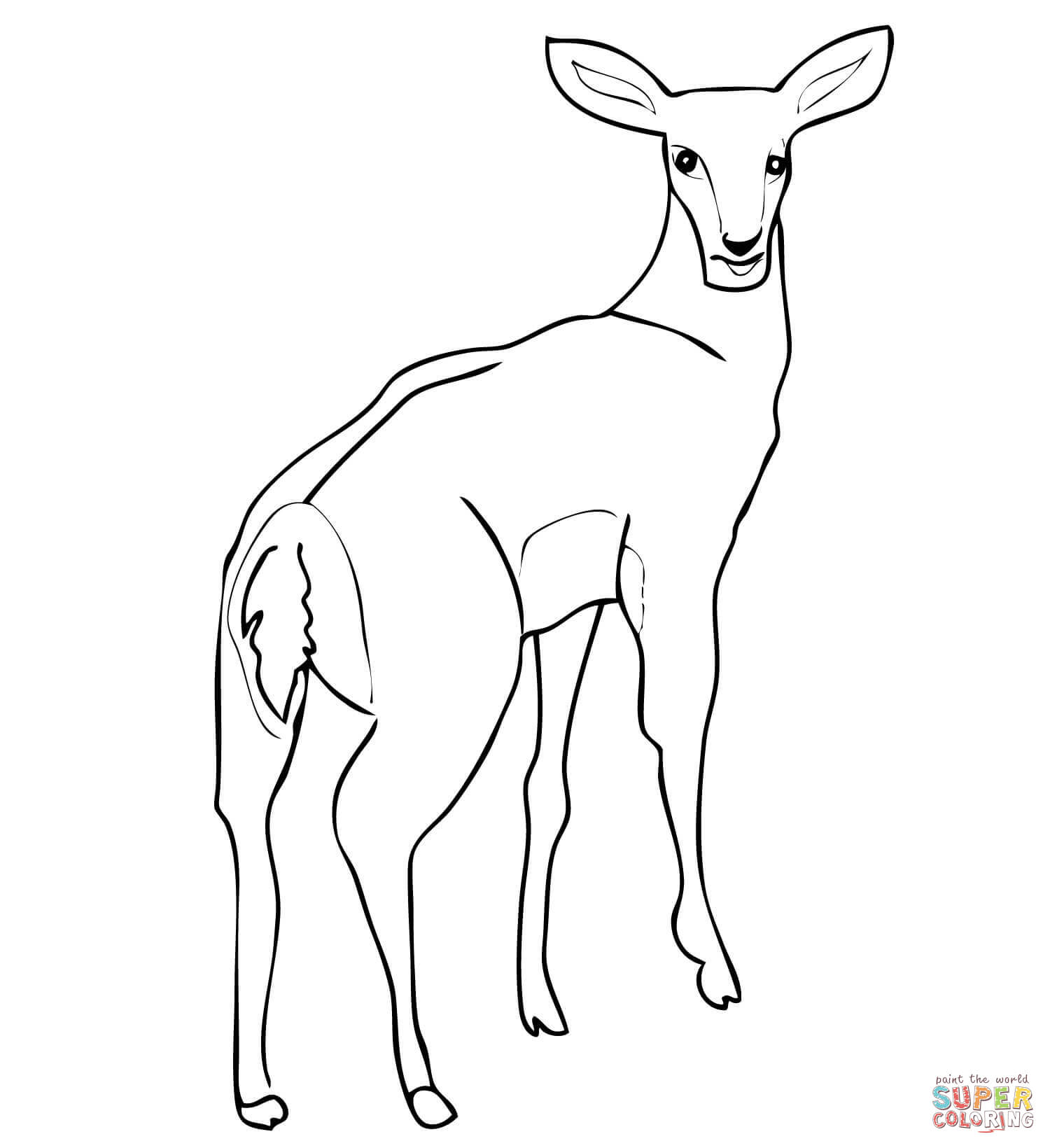 Female Impala Antelope Coloring Page